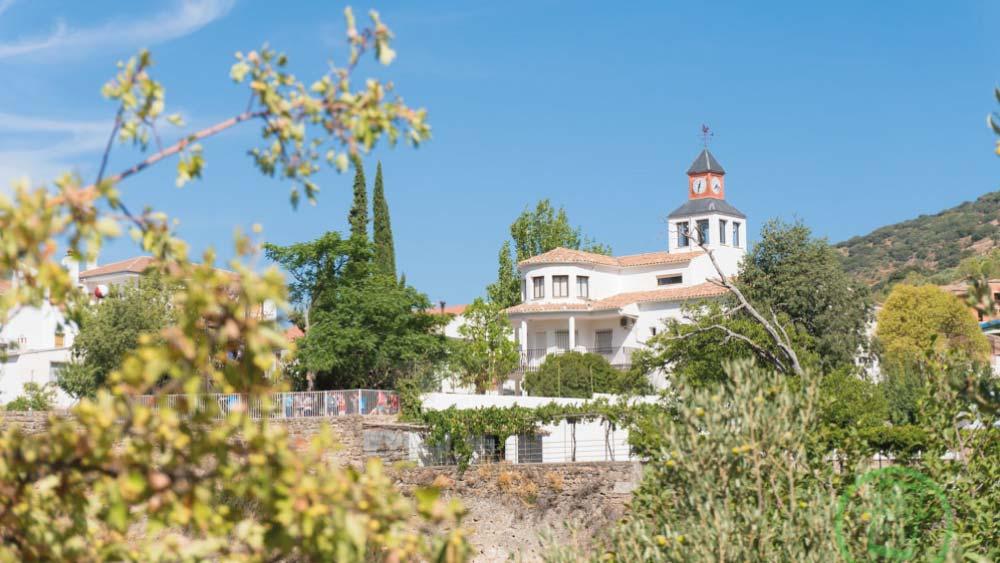 Ayuntamiento y Parque Multiaventura | Vistas Ayuntamiento | Free Tour En Tu Mano | Frailes