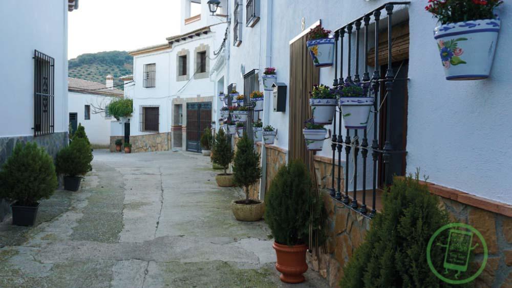 Barrio de la Plaza de los Toros | Calle Santo Rostro | Free Tour En Tu Mano | Frailes