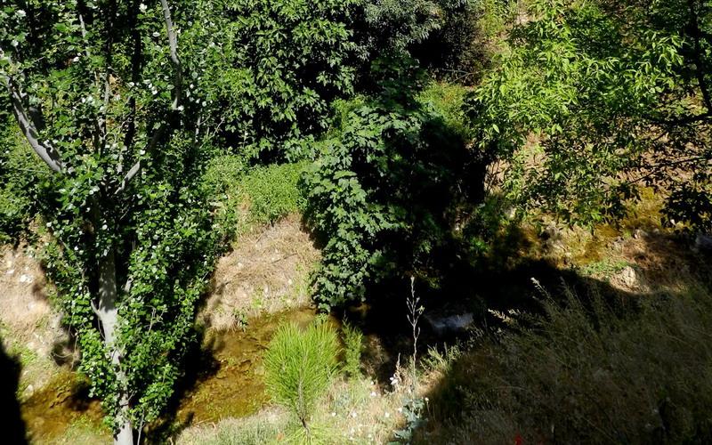 Los ríos | Río La Martina