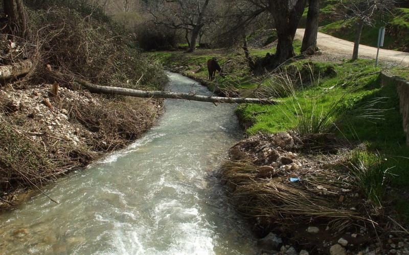 Los Ríos | Río Sotorredondo