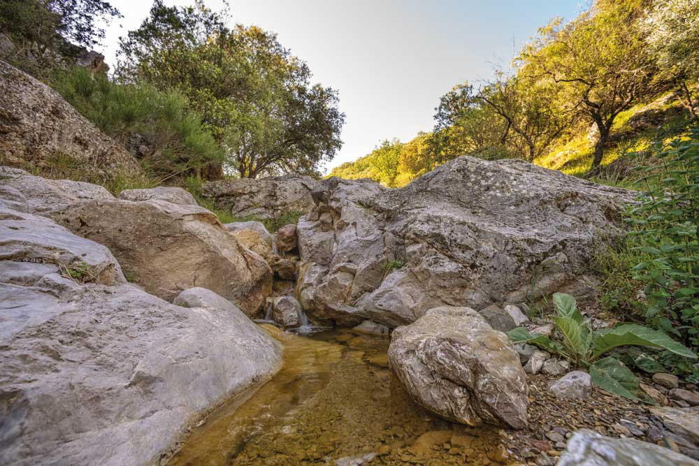 Turismo Rural | Senderismo | Ruta de 'Los Barrancos' | Frailes