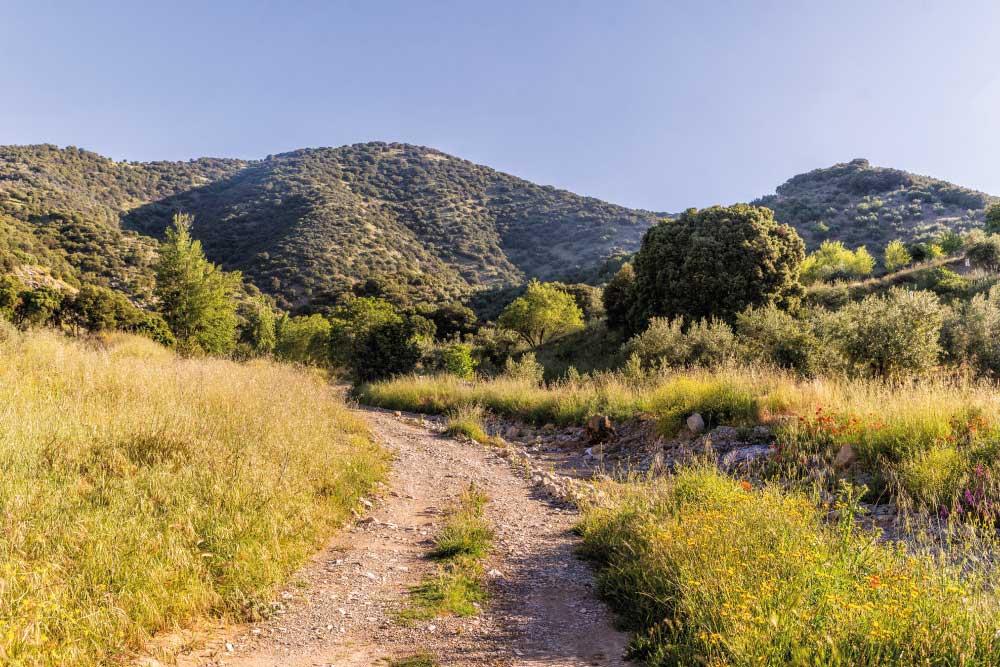 Turismo Rural | Senderismo | Ruta de 'Los Barrancos' | Sillón de la Reina | Frailes