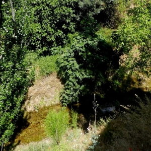 Entorno Natural de Frailes | Río La Martina