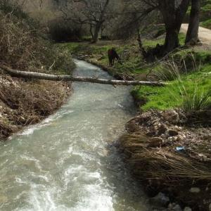 Entorno Natural de Frailes | Río Sotorredondo