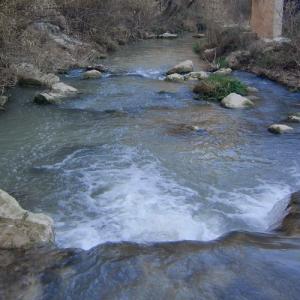 Entorno Natural de Frailes | Río Frailes o Velillos | Cauce